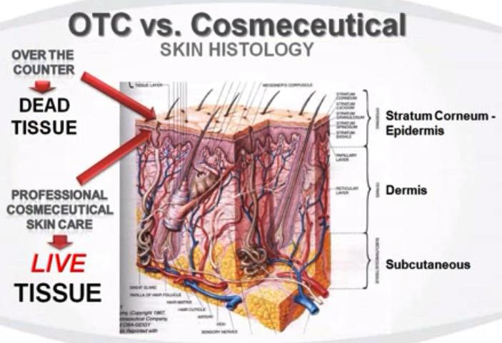 Image of skin
